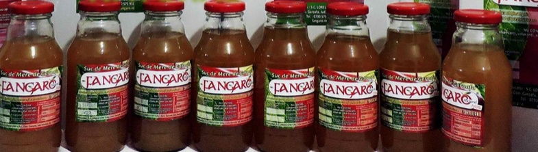 Suc de mere Fangaro Natural 0,33l – Produs sub lupa AlegeBine.com